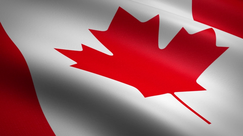 Flag of Canada. Waving flag with highly detailed fabric texture seamless loopable video. Seamless loop with highly detailed fabric texture. Loop ready in HD resolution 1080p 60fps | Shutterstock HD Video #1039207355