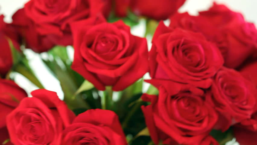 Red rose flower over dark red blinking background valentines day rotating bouquet of red roses in glass bowl hd video 1920x1080 shallow depth of negle Image collections