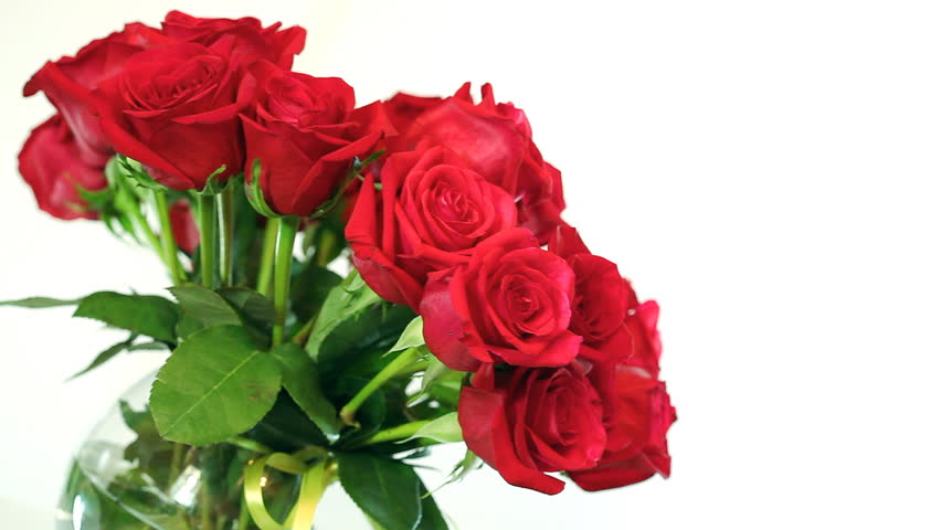 rotating bouquet of red roses in glass bowl. HD video 1920x1080. Shallow depth of field