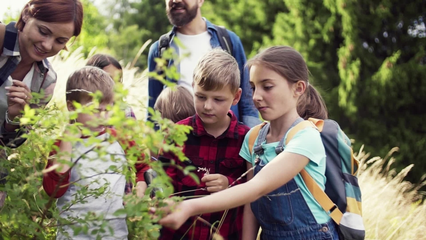 Group of school children with teacher on field trip in nature, learning science. | Shutterstock HD Video #1041328285