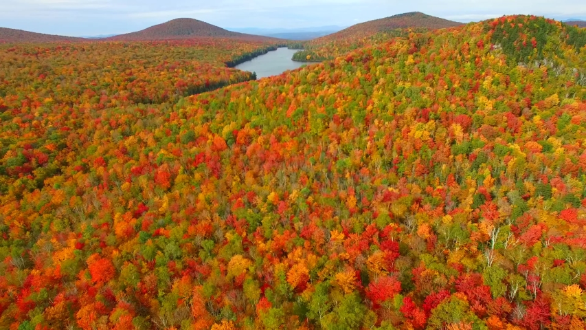 Groton/Vermont  Aerial video from Groton     taken by drone camera | Shutterstock HD Video #1041520825