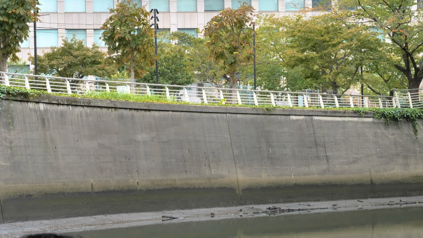 The white railings on the wall in Tokyo Japan with the plants on the other side | Shutterstock HD Video #1044891355