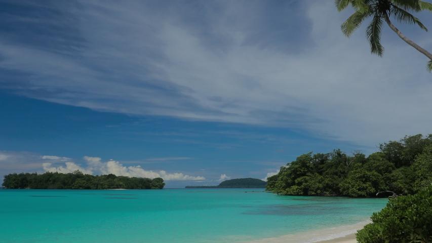 Port Orly sandy beach with palm trees, Espiritu Santo Island, Vanuatu. | Shutterstock HD Video #1045434625