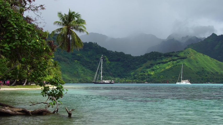 Moorea, Tahiti French Polynesia. Sailboats in Cooks bay. Tropical vacation paradise island with lagoon beach. Luxury romantic getaway, exotic vacation destination.  | Shutterstock HD Video #1045441975