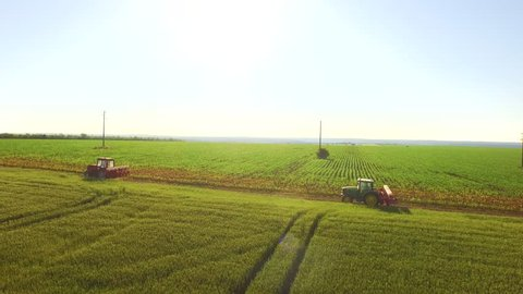 Aerial Agriculture Field Shot Tractor Passing Summer Cornfield Healthy Food Production Concept