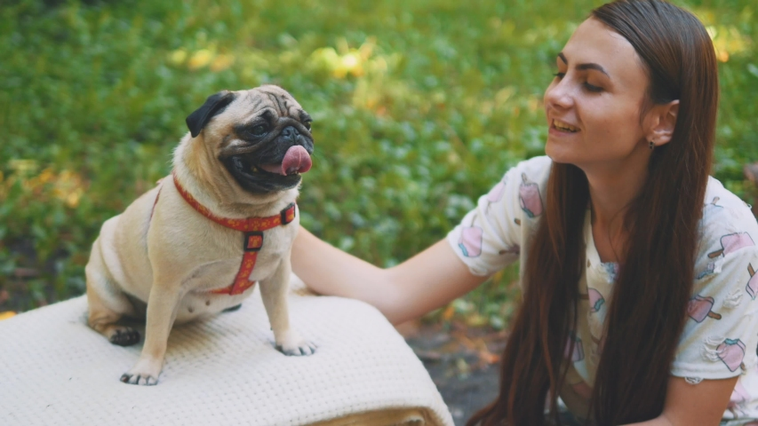 Smiling lady is taking free time with her dog. Woman relaxing in the nature with her little pug dog. Close up. Copy space. 4K. | Shutterstock HD Video #1046771035