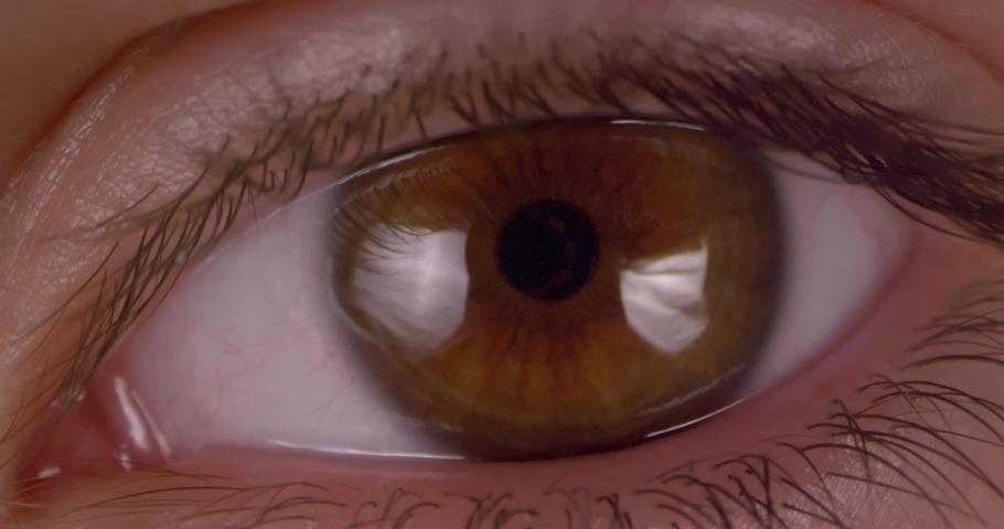 Female green-brown eye.  Extreme macro.   Shutterstock HD Video #1047112195