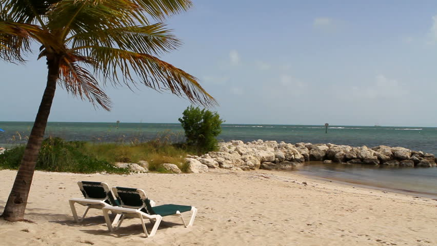 Vacant recliners sit on Key West Beach, Florida under a palm tree blowing in the breeze with the tropical Atlantic ocean in the background.
