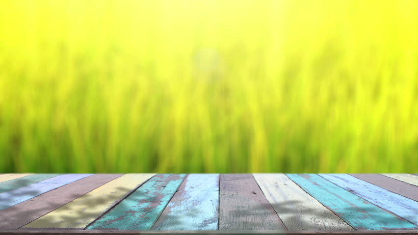 Table Top and Blur Nature Stock Footage Video (100% Royalty-free) 10520675   Shutterstock