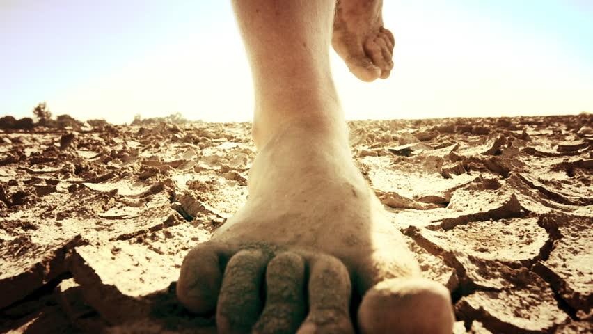 Image result for desert land walk