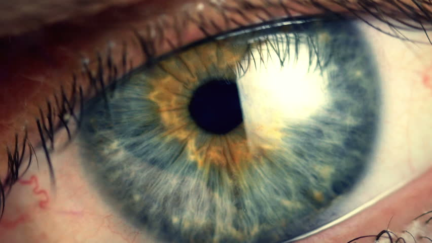Human eye iris contracting. Extreme close up. | Shutterstock HD Video #11349275