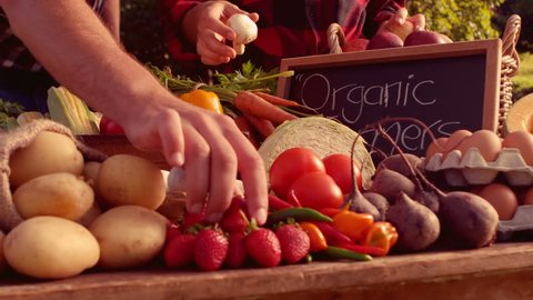 Couple selling organic vegetables at market on a sunny day in slow motion