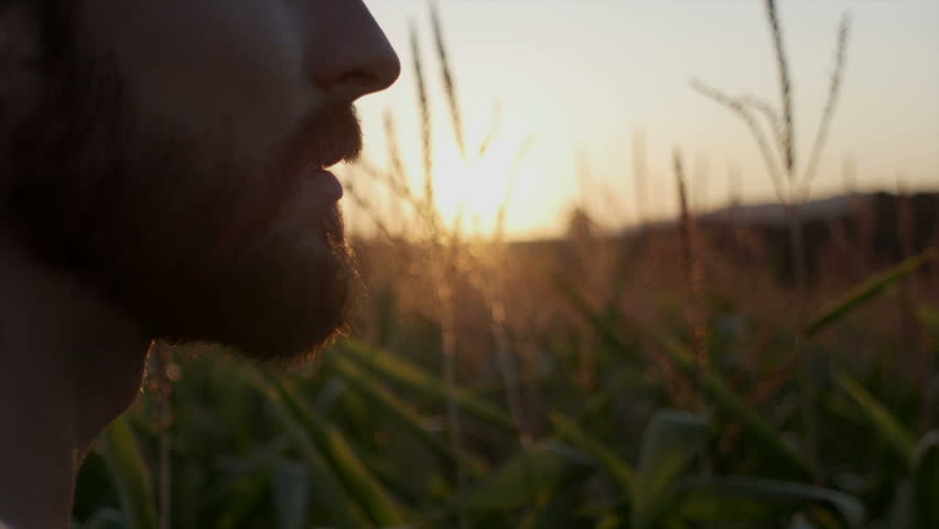 Handsome man with beard with nature landscape in sunset/sunrise. Close up.
