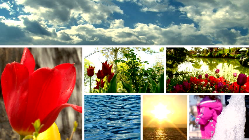 Four Seasons Collage Several Images Beautiful Stock Photo ...