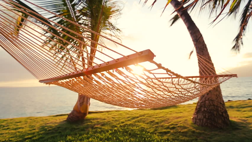 Hammock And Palm Trees At Sunset With Flares Swinging On The Wind Between Two
