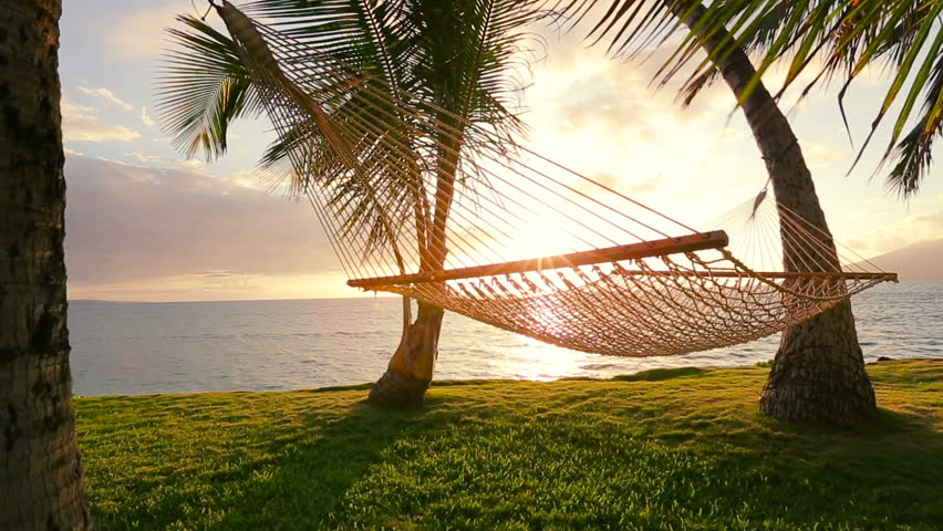 Hammock And Palm Trees At Sunset Swinging On The Wind Between Two Backyard Oceanfront Real Estate Maui Stock Footage Video 11708375