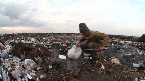 dump man unemployed homeless dirty looking food waste in landfill  social  video