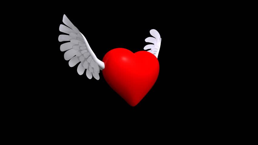Winged Heart | Shutterstock HD Video #1191889