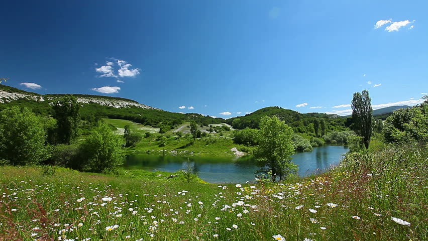 valley with river and chamomile flowers