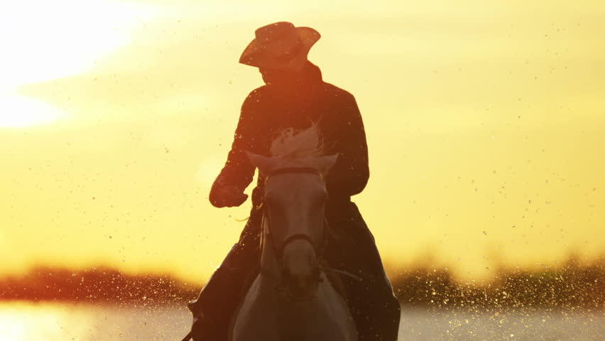 Cowboy Camargue France rider animal horse sunrise white livestock nature France running Mediterranean water outdoors wetland freedom RED DRAGON | Shutterstock HD Video #12327827