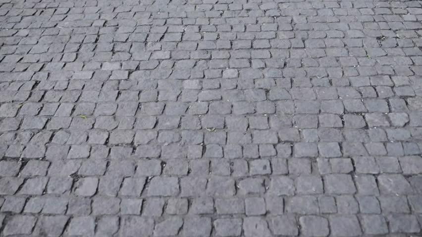 A sidewalk - known as a footpath, footway or pavement