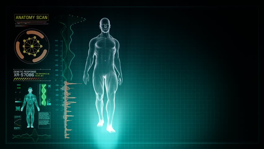 Stock video of futuristic interface display of full body | 11301752 ...