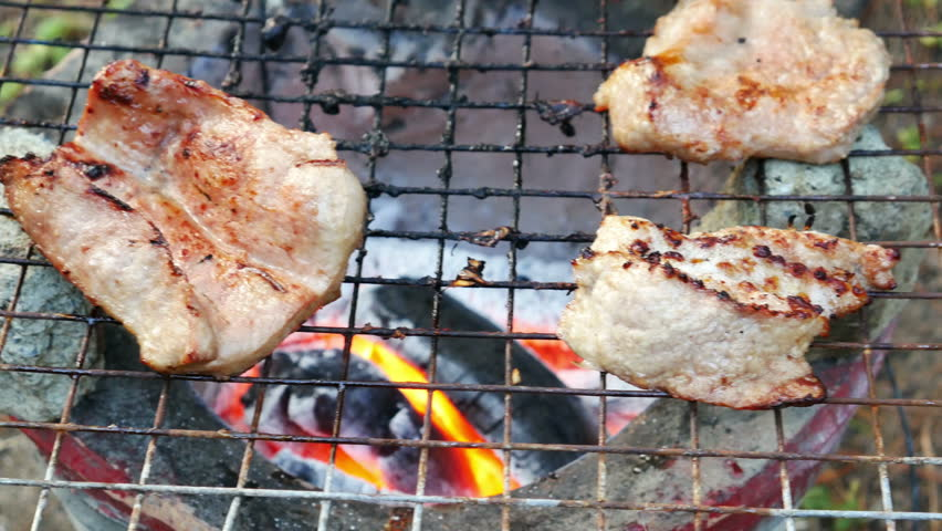 Bar-B-Q or BBQ with kebab cooking. coal grill | Shutterstock HD Video #13042445