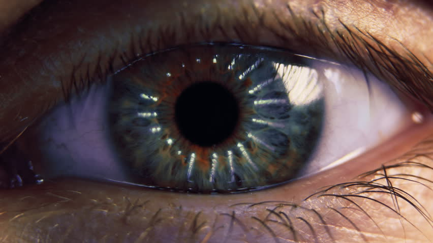 Eye iris and pupil macro. Reflected moving light rays into the human eye with zoom. Closeup