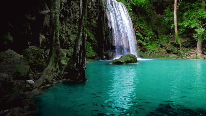 Jungle landscape with school of fish in pond and flowing water of Erawan cascade waterfall at deep tropical rain forest. National Park Kanchanaburi, Thailand. With original audio