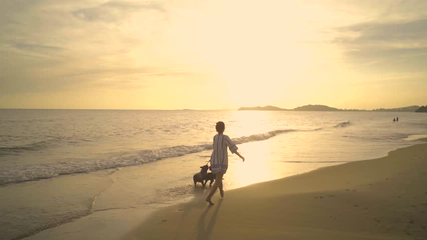 Happy woman walking and playing with french bulldog sunset on the beach.
