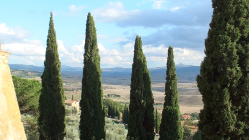 View on the valley of the Val d'Orcia with rain coming in and a lane of cypresses in the foreground