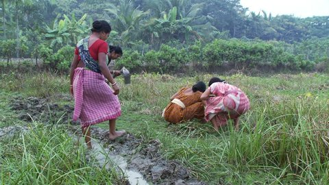 Baruipur, India - CIRCA 2013 - Women cultivating ground and digging irrigation ditch
