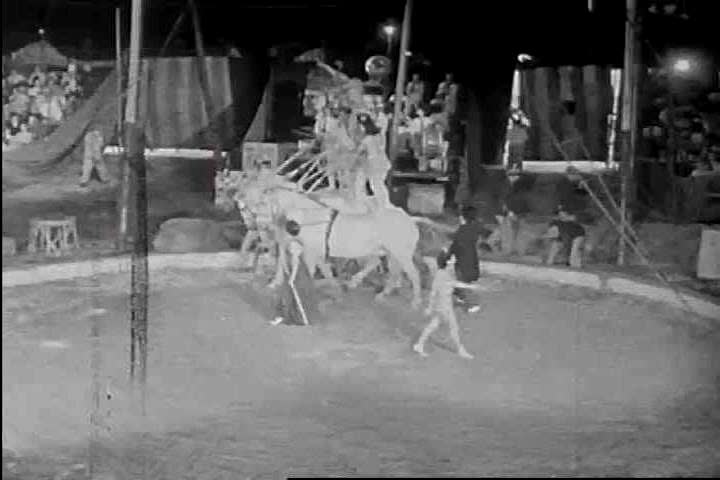CIRCA 1940s - Equestrian stunt performers ride under the big tent American circus in 1942. & UNITED STATES 1940s Two Groups Of Horses Perform Tricks At ...