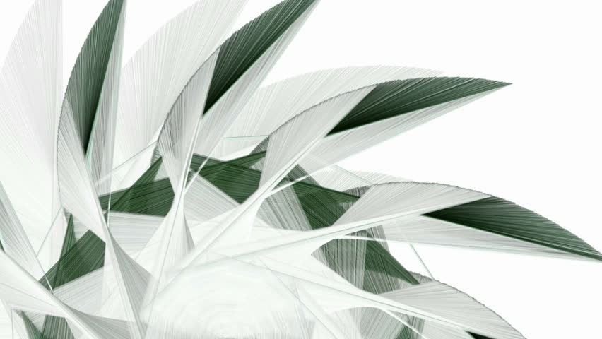 Abstract animated random fractal forms hatched by white, gray and green crayons moving from one point on a white background | Shutterstock HD Video #14521945
