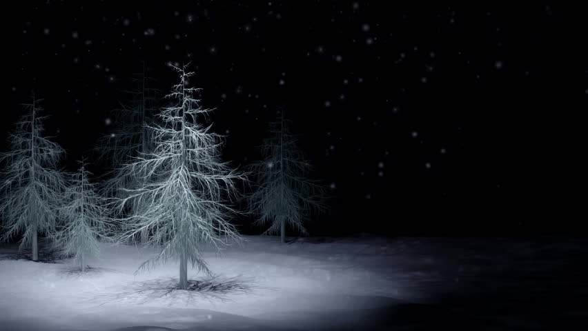 Snow Falling On Forest at Stock Footage Video (100% ...