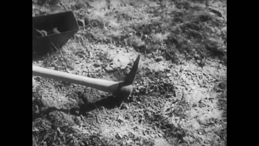 UNITED STATES 1930s: Men Dig at Ground | Shutterstock HD Video #14602285