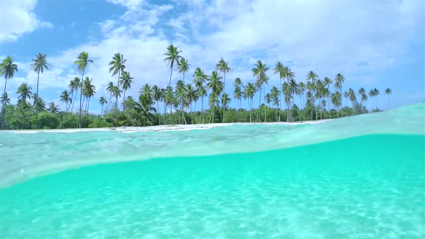 SLOW MOTION HALF UNDERWATER CLOSE UP: Beautiful tropical island with tall palm trees on white sandy exotic beach and amazing crystal clear blue ocean lagoon | Shutterstock HD Video #14617180