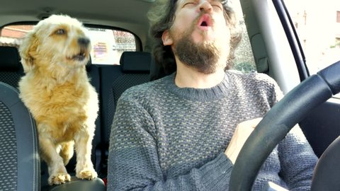 Happy man in love with dog barking in car