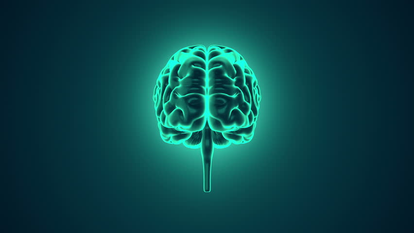 Abstract background with animation of rotation Human brain with glow. Backdrop of science or social technology. Animation of seamless loop. | Shutterstock HD Video #14884915