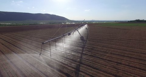 Aerial view of corn fields being irrigated with center pivot system on a large scale commercial corn field
