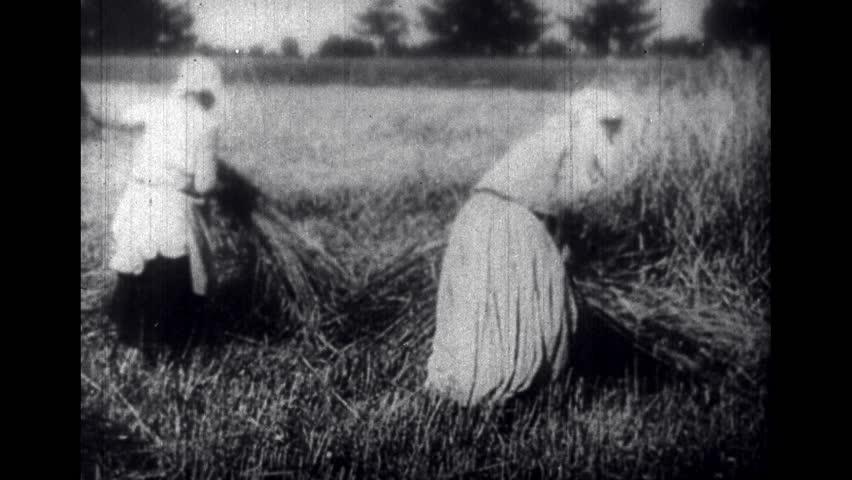 EUROPE 1900s: Ladies Working in Fields in Russia