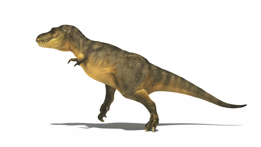 Header of dinosaur