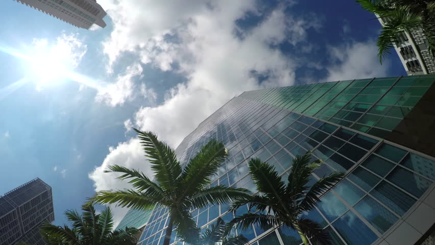 Summer sun reflecting in glass skyscrapers, contemporary office buildings, hotels and big residential block of flats with lush palm trees on sidewalk in business downtown in sunny Florida
