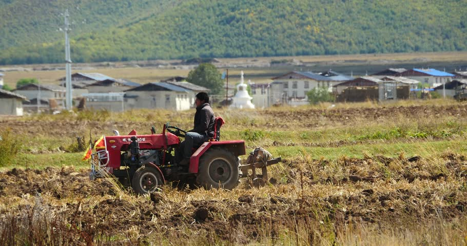 oct 16,2015:4k tibetan people use farm tractor Arable land,far away other people use strong yak cultivated field in shangrila yunnan,china. gh2_10377_4k