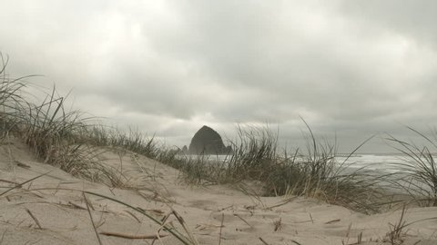 Wide angle, beach grass blows on sand dunes on a typical overcast day in the Pacific Northwest at Cannon Beach, Oregon.