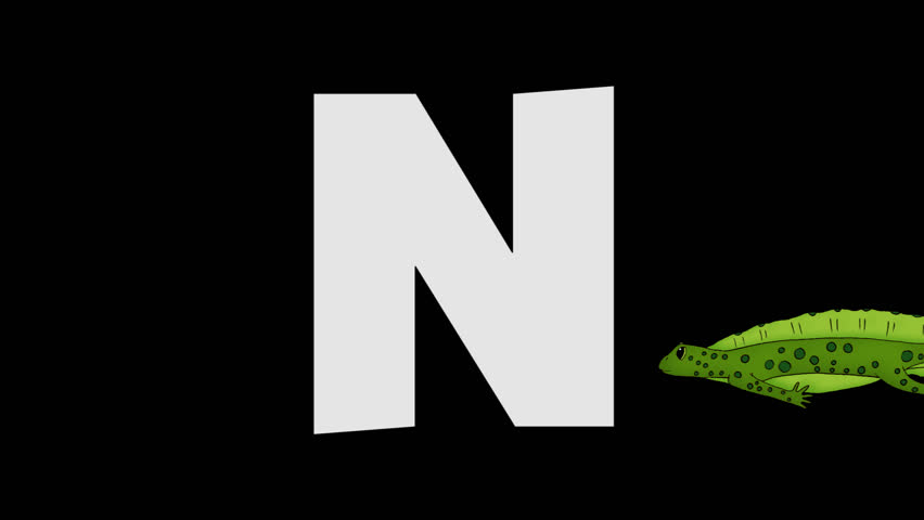 Letter N and Newt (background)