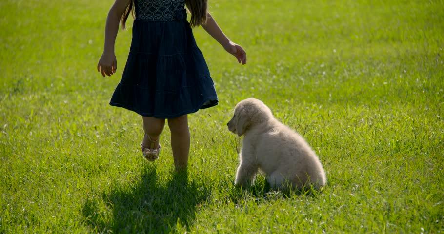Pet with children Dog   Shutterstock HD Video #15871135