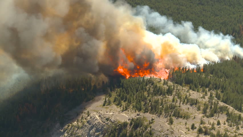 Forest fire big flames aerial | Shutterstock HD Video #1588855