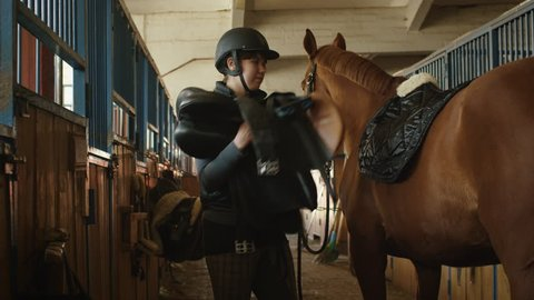 Young jockey girl is preparing a horse for a ride in stable. Shot on RED Cinema Camera in 4K (UHD).