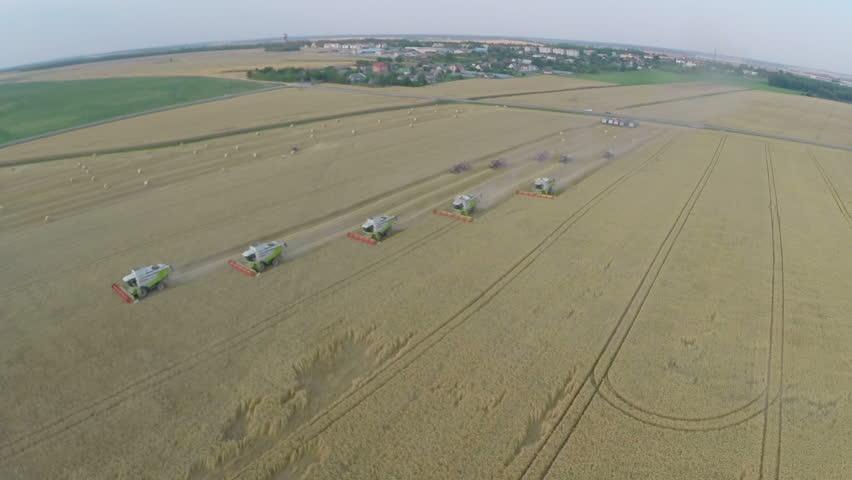 Wheat harvesting shearers in Eastern Europe | Shutterstock HD Video #16335925